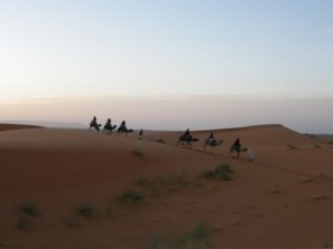 The editor of Leipzig Glocal travels with a tour group into the Sahara Desert, Morocco.
